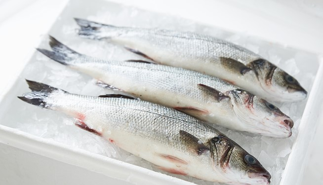 Farmed Whole Sea Bass