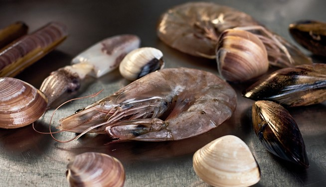 Fruit De Mer (premium shell-on seafood mix)